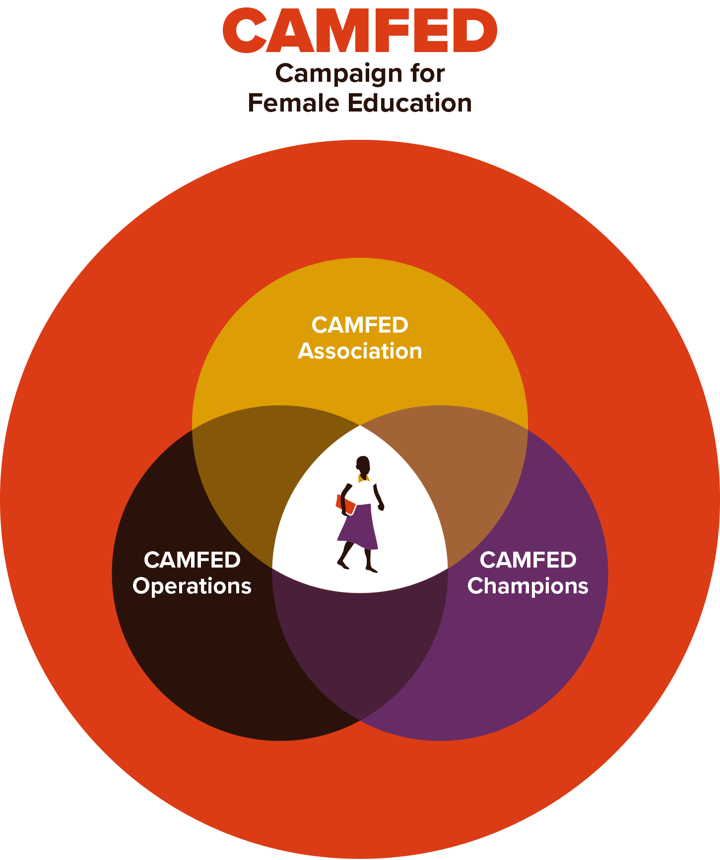 CAMFED operating model diagram